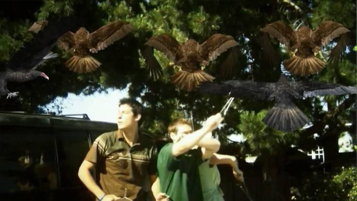 Birdemic 2008 still